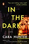 In the Dark (DI Adam Fawley, #2)