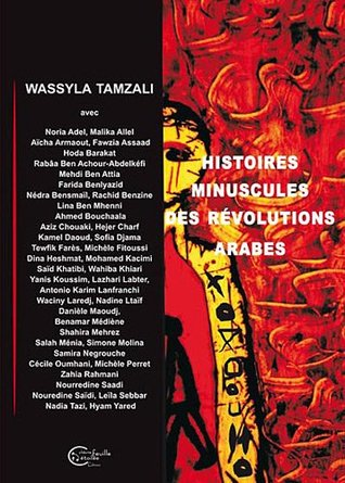 Histoires minuscules des révolutions arabes