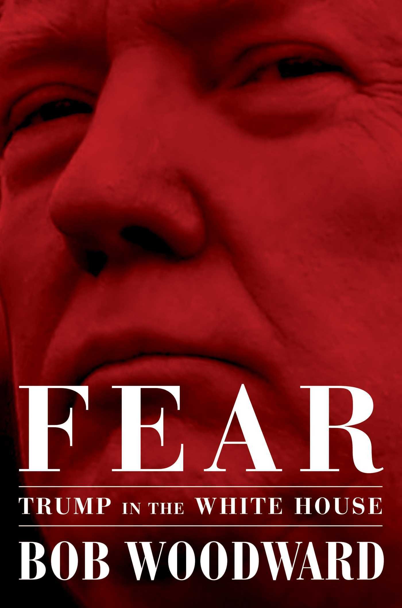 Fear  Trump in the White House