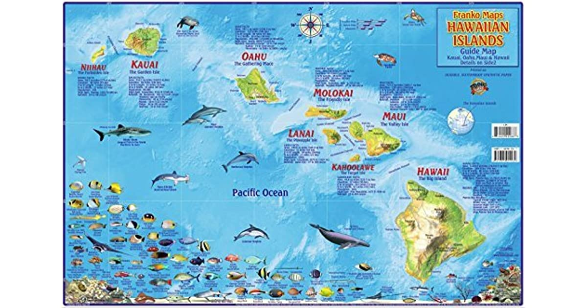 Palau Adventure /& Dive Guide Laminated Map Poster by Franko Maps