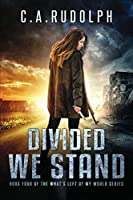 Divided We Stand: Book Four of the What's Left of My World Series