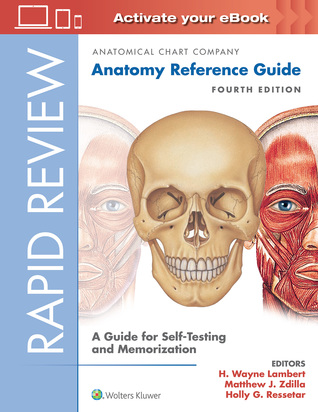 Rapid Review: Anatomy Reference Guide: A Guide for Self-Testing and Memorization