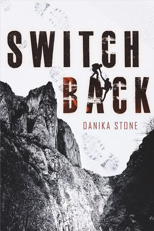 Switchback by Danika Stone