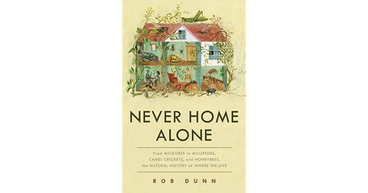 never home