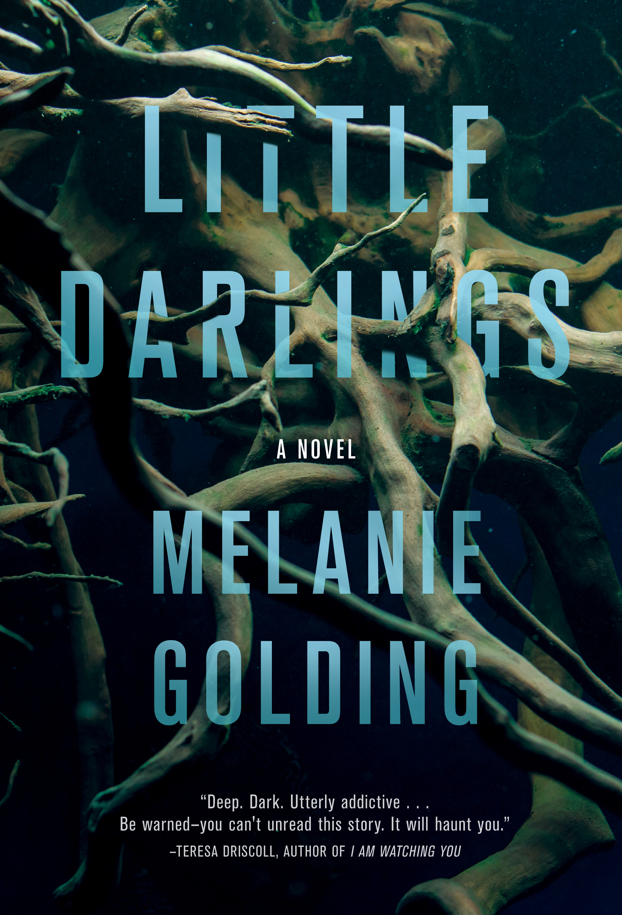 Image result for little darlings book