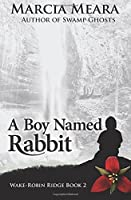 A Boy Named Rabbit (Wake-Robin Ridge #2)