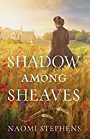 Shadow among Sheaves