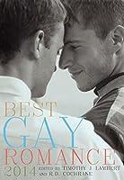 Best Gay Romance 2014