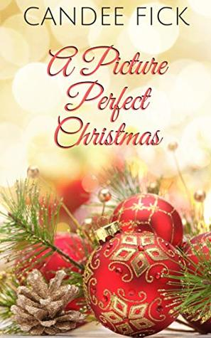 A Picture Perfect Christmas (The Wardrobe #4)