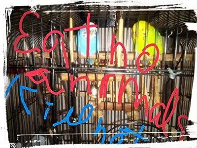 Wissenschaftliche Methode gegen Chaos und Tod. Nicht das tote Huhn der Imbiss.: Tote Tiere nicht zum Essen. Paradies ohne Tod real!