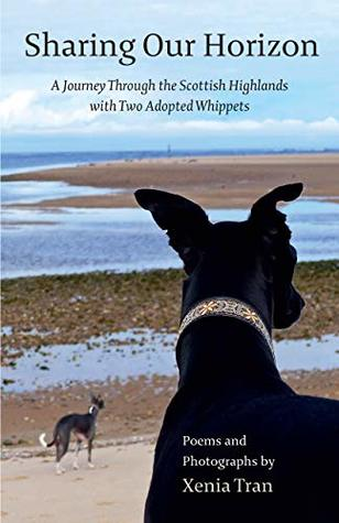 Sharing our Horizon: A Journey Through the Scottish Highlands with Two Adopted Whippets
