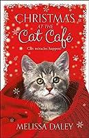 Christmas at the Cat Café