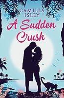 A Sudden Crush: A Romantic Comedy Large Print Edition