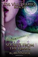 Secrets From the Grave (The Veil Diaries)