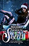 Holidays Between the Sheets: A Reverse Harem Anthology of Festive Scenes that Get to the Point