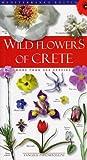 Wild Flowers of Crete