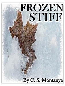 Detective Book: Frozen Stiff