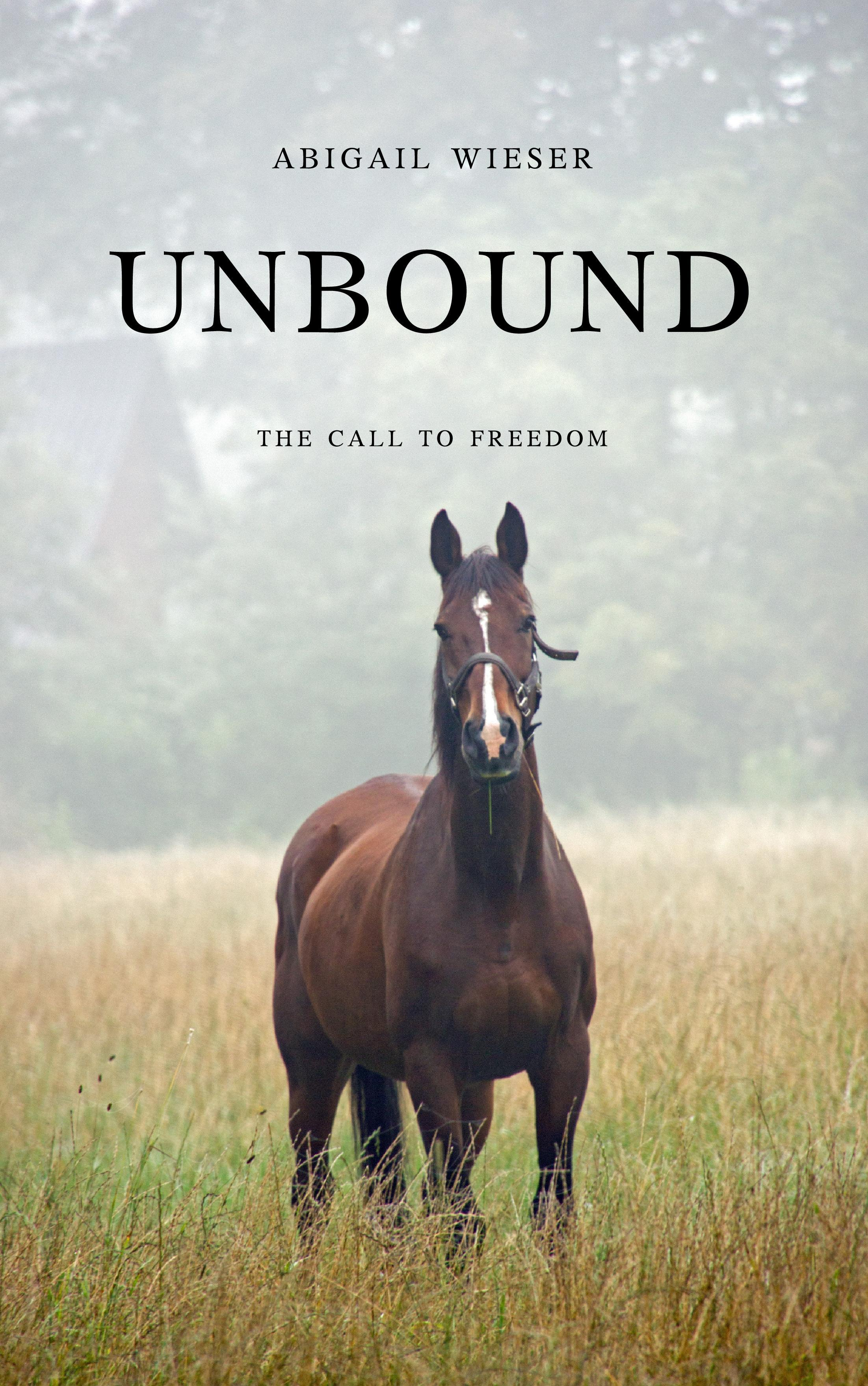 Unbound: The Call to Freedom