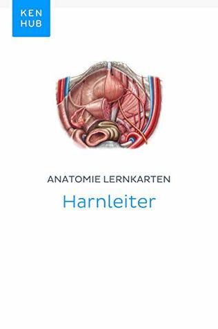 Anatomie Lernkarten: Harnleiter: Lerne alle Organe, Arterien und Venen unterwegs (Kenhub Lernkarten 66)