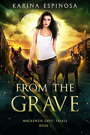 From the Grave: A New Adult Urban Fantasy