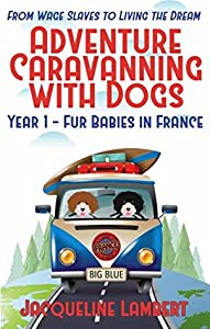 Year 1 - Fur Babies in France: From Wage Slaves to Living the Dream