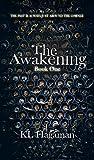 The Awakening (The Awakening, #1)