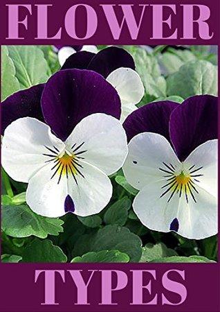 Flower Types Annual Flowers Perennial Flowers Bulb Flowers