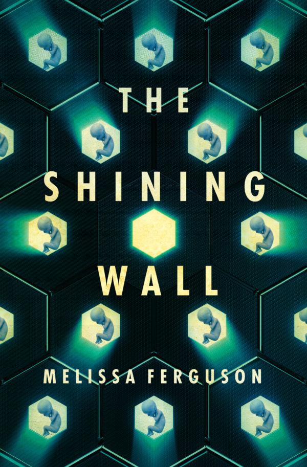 The Shining Wall Melissa Ferguson