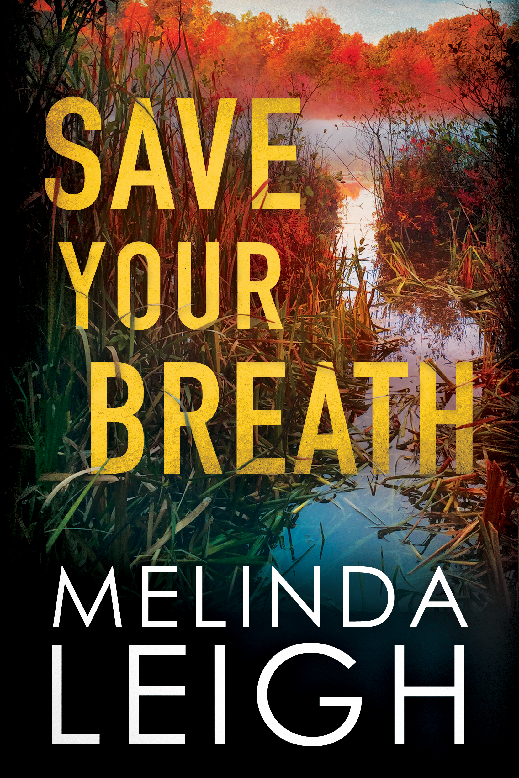 Save Your Breath  - Melinda Leigh