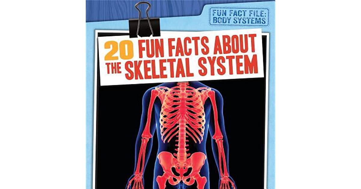 20 Fun Facts About The Skeletal System By Theresa Emminizer