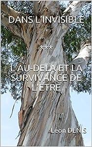 DANS L'INVISIBLE *** L'AU-DELA ET LA SURVIVANCE DE L'ETRE (Oeuvres de Léon DENIS t. 3)