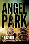 Angel Park (The Park Trilogy, #3)