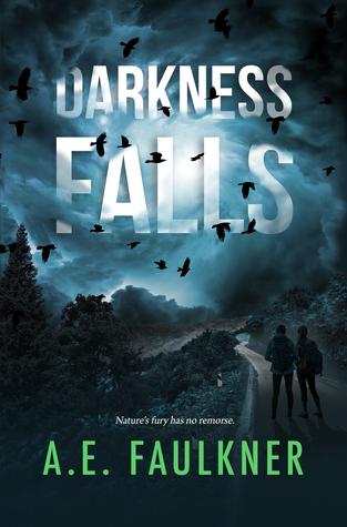 Darkness Falls (Nature's Fury, #1)