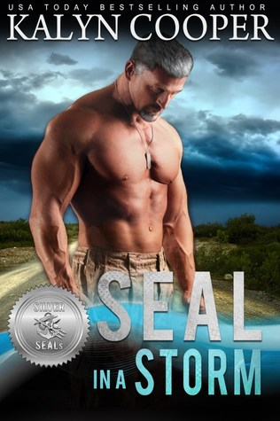 SEAL in a Storm (Silver SEALs)