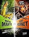 Praying Mantis vs. Giant Hornet: Battle of the Powerful Predators (Mini-beast Wars)