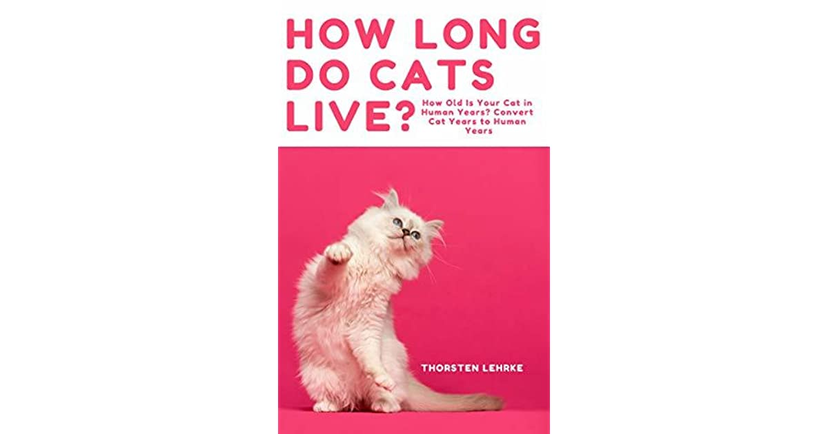 how long do cats live - 1200×630
