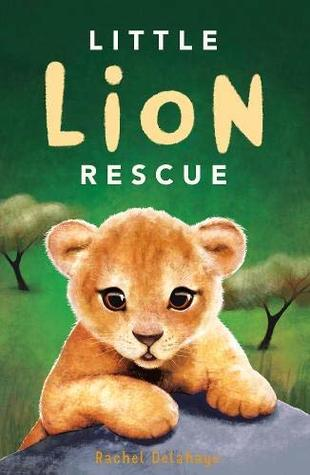 Little Lion Rescue by Rachel Delahaye