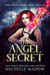 The Angel Secret (Dark World: The Angel Trials Book 6)