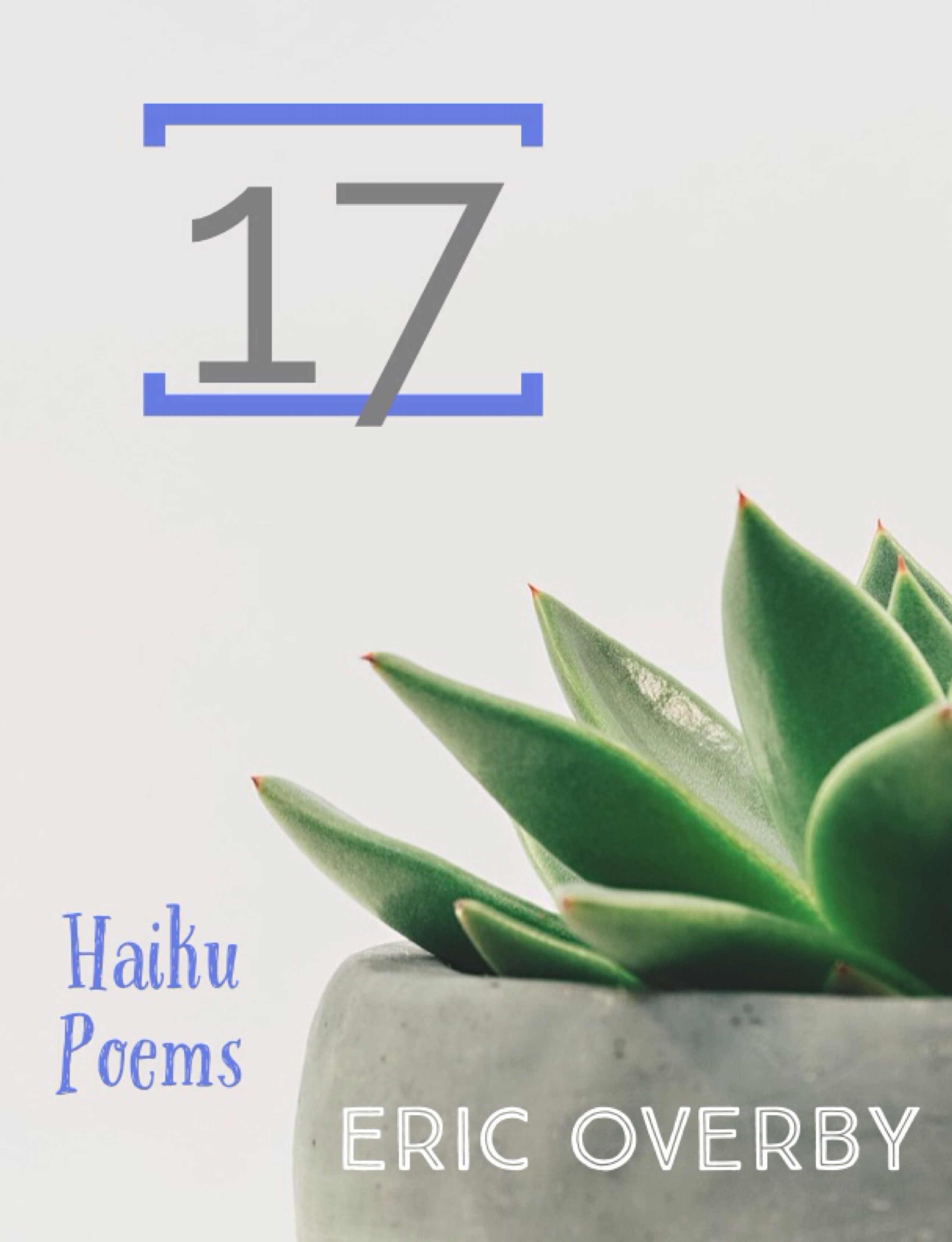 17: Haiku Poems
