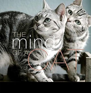 The Mind of a Cat