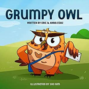 Grumpy Owl