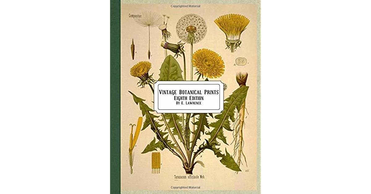 Vintage Botanical Prints: Eighth Edition by E  Lawrence