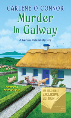 Murder In Galway (Home to Ireland Mystery #1)