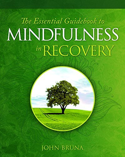 The Essential Guidebook to Mindfulness in Recovery (2019, Central Recovery Press)