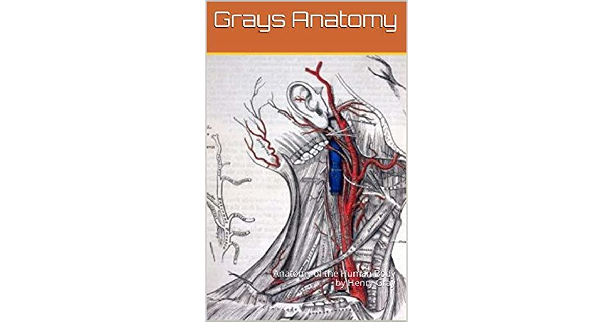 Grays Anatomy Anatomy Of The Human Body By Henry Gray By Henry Grays