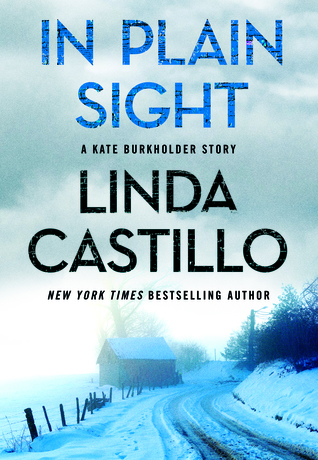 In Plain Sight (Kate Burkholder, #10.5)