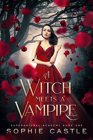 A Witch Meets A Vampire (Supernatural Academy Book 1)