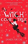 The Apprentice Witch 3: A Witch Come True