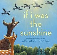 If I Was the Sunshine