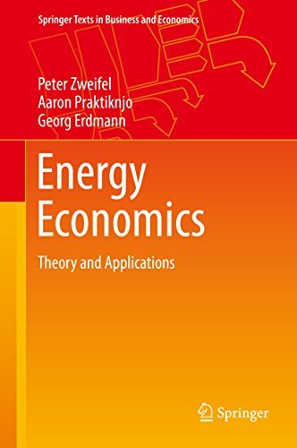 Energy Economics Theory and Applications (Springer Texts in Business and Economics)
